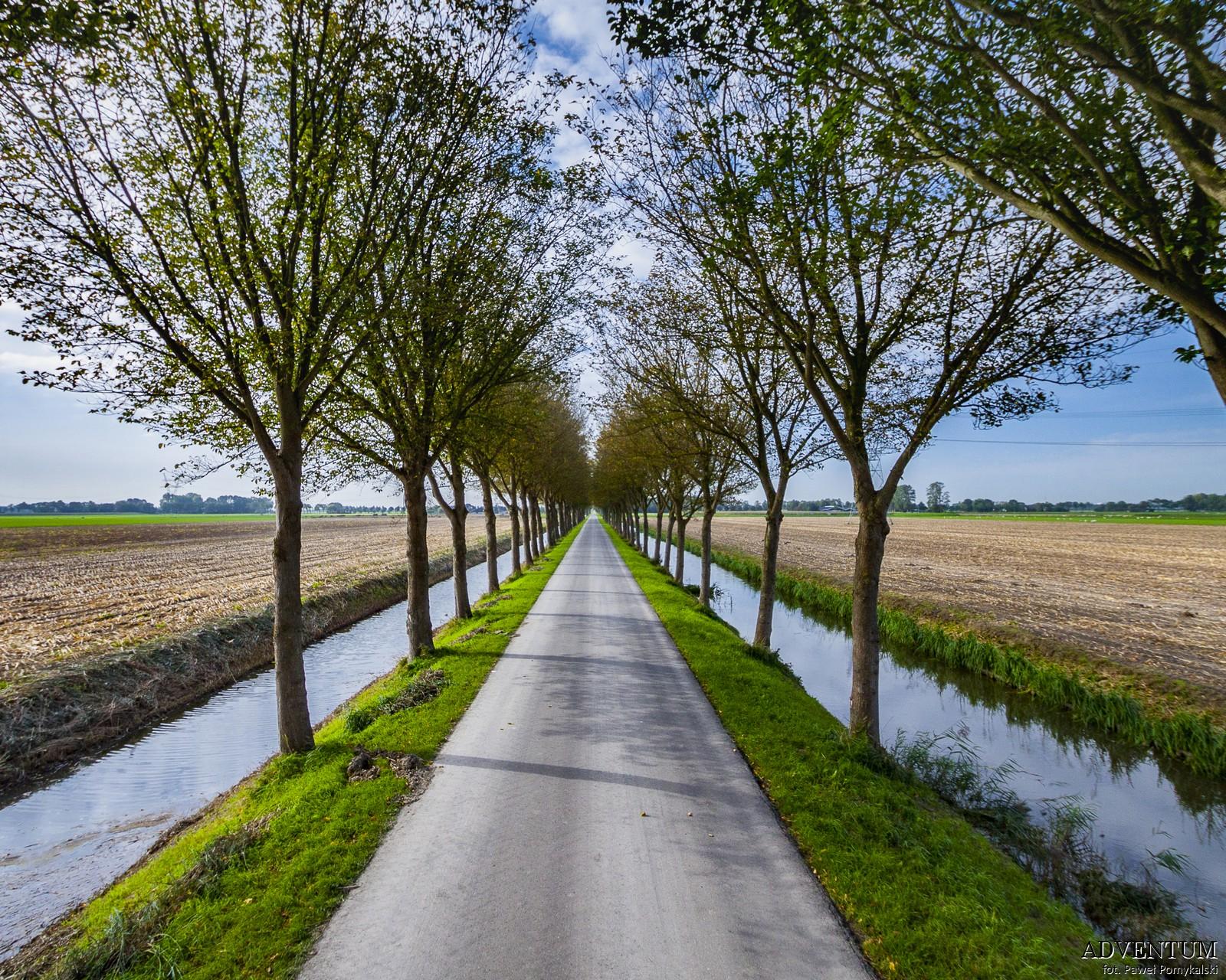 Holandia Polder Beemster Atrakcje Zwiedzanie co Zobaczyć Amsterdam Rotterdam Haga Kanały Wiatraki