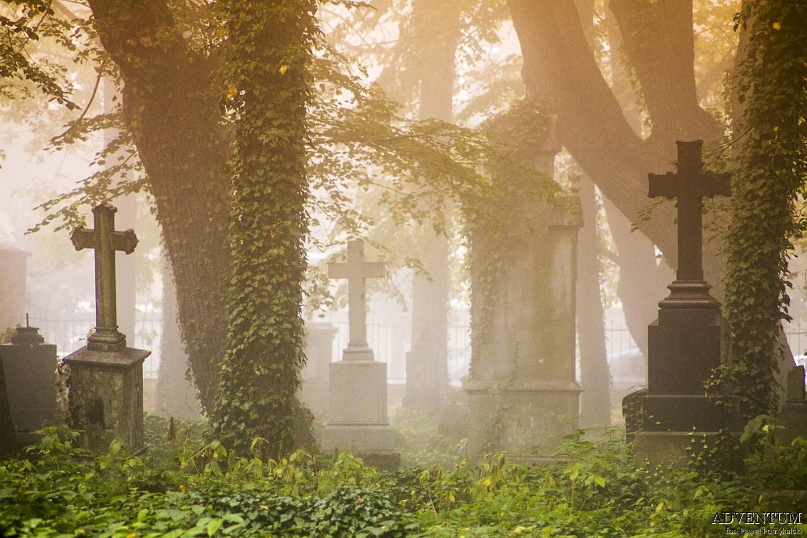 Cmentarze Górny Śląsk Cmentarz nekropiloia Żory