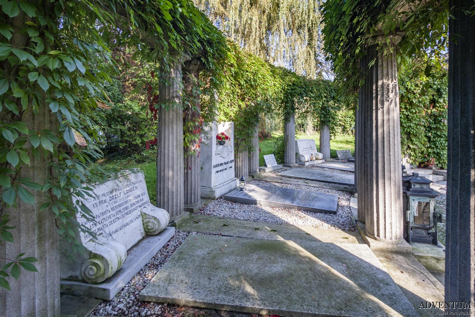Cmentarze Górny Śląsk Cmentarz nekropiloia Cieszyn