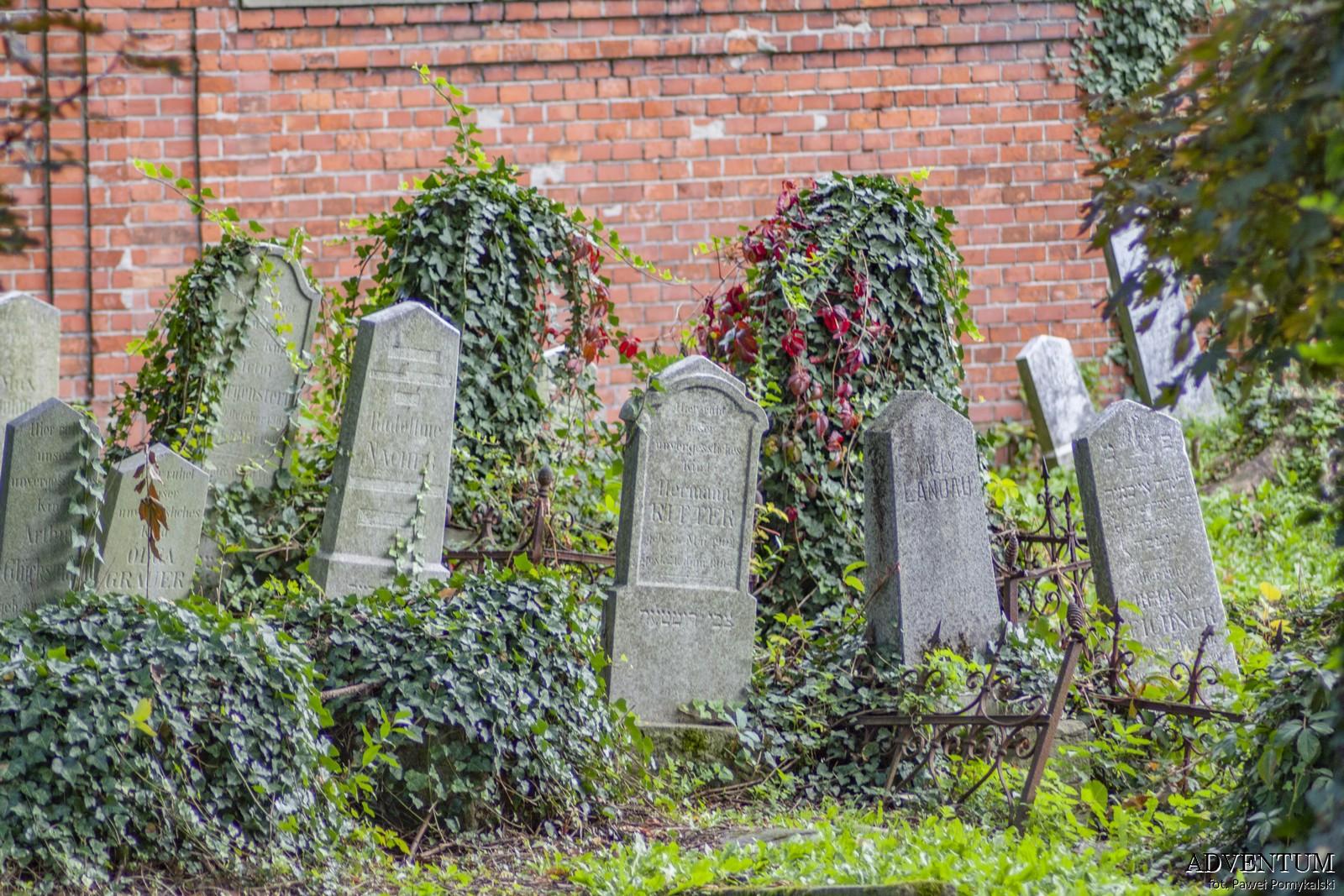 Cmentarze Górny Śląsk Cmentarz Żydowski nekropiloia Bielsko