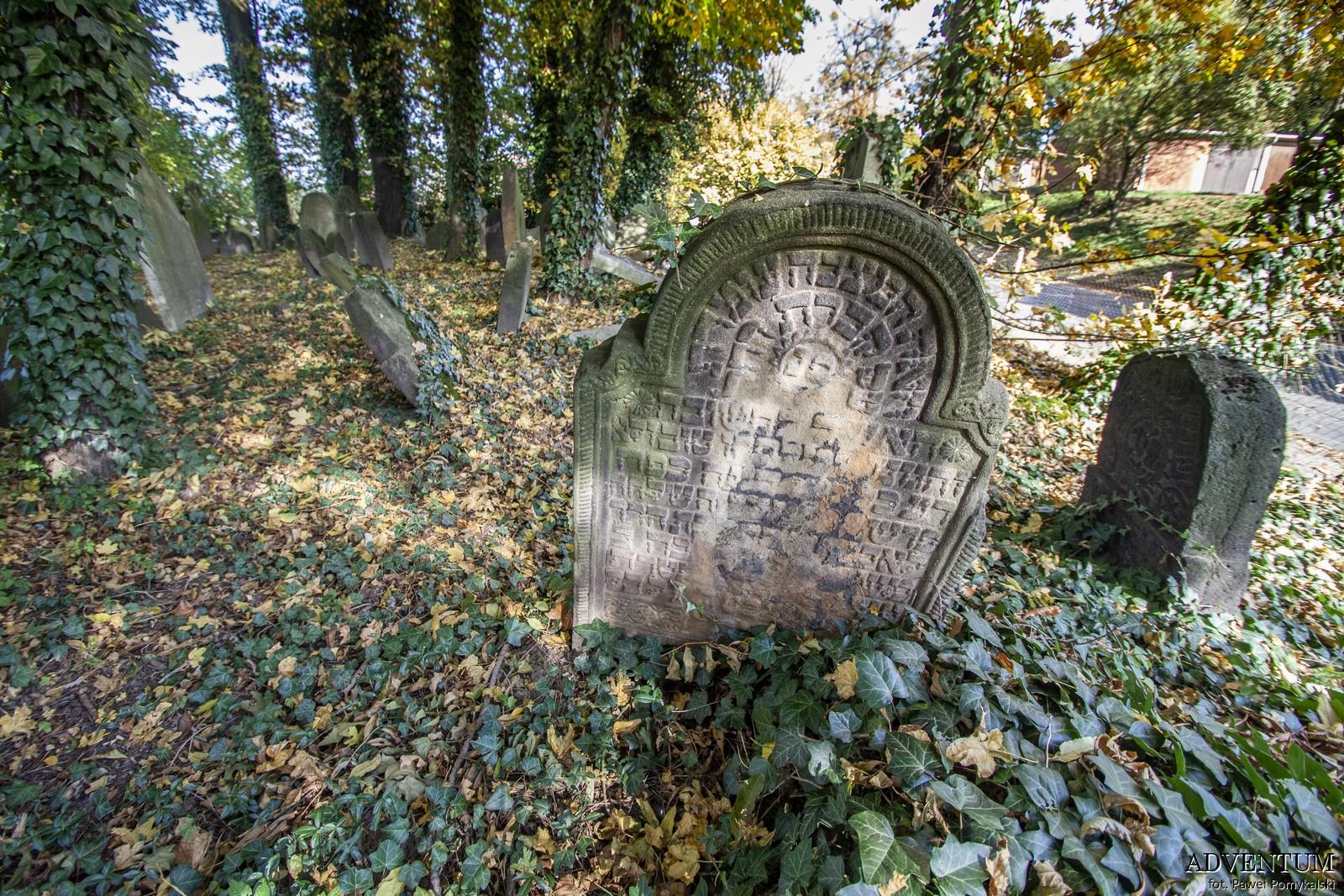 Cmentarze Górny Śląsk Cmentarz Żydowski nekropiloia Cieszyn