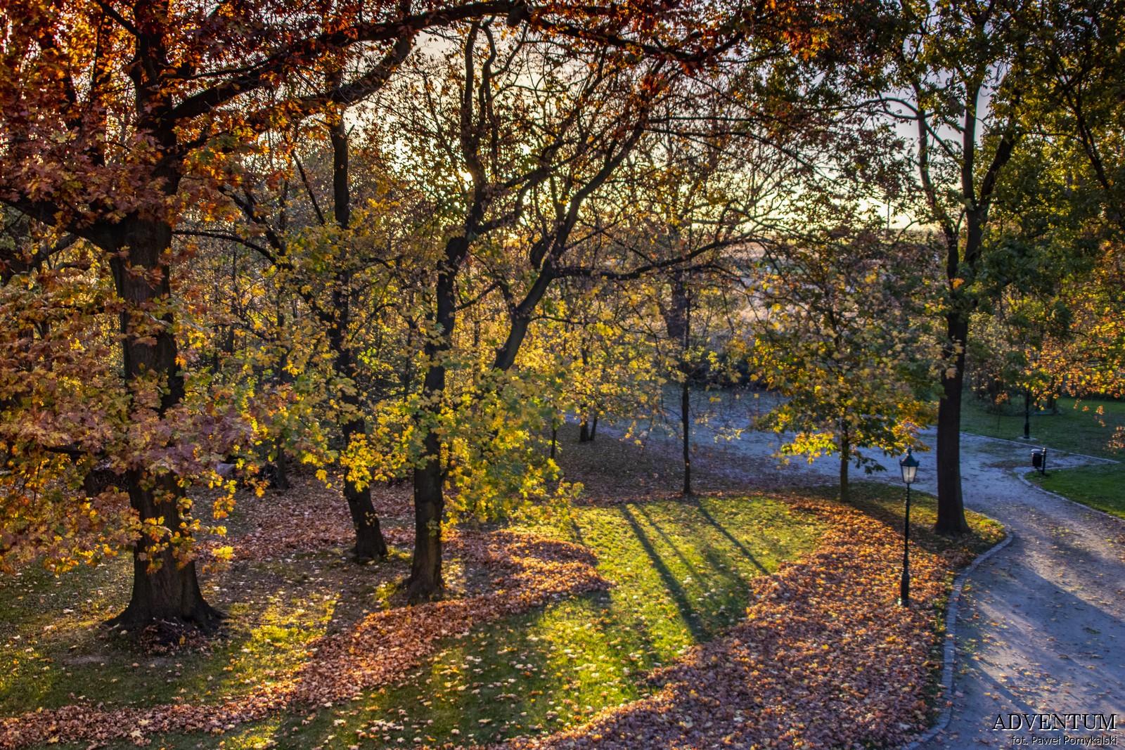 Gruszów pałac dolny śląsk świdnica hotel noclegi park jesień