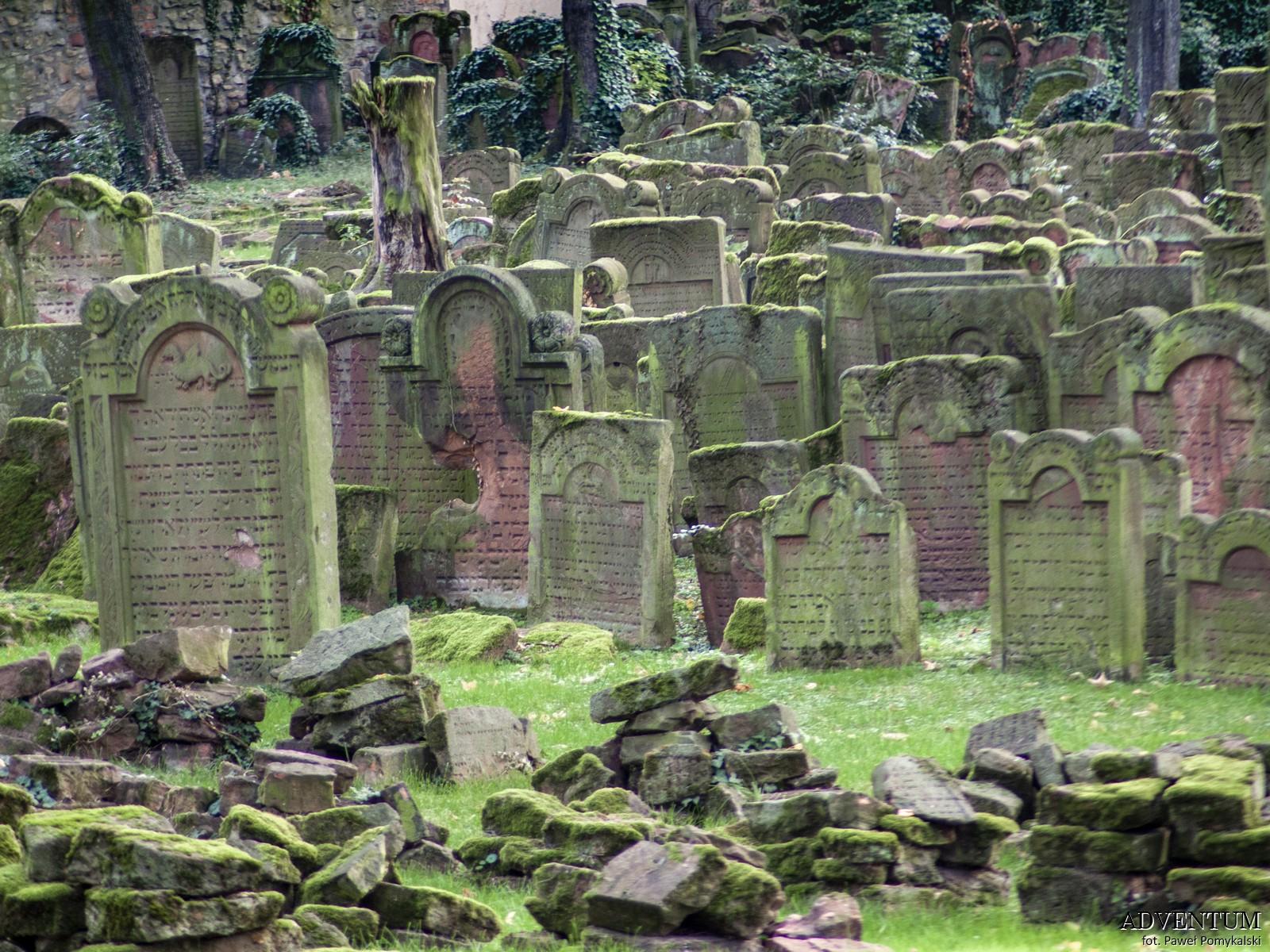 cmentaż żydowski
